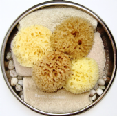 Baby & Toddler Sponges